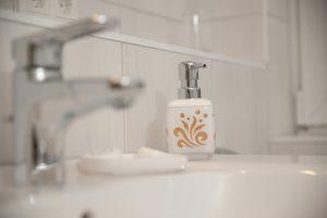Ferienwohnung Elbdeich 2 Seniorengerechtes Badezimmer